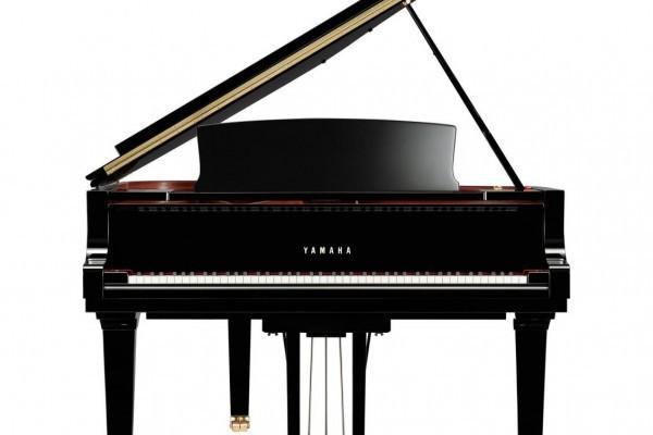 Yamaha_Fluegel_C6X-2.jpg